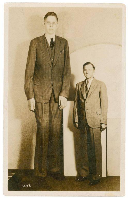 Robert Wadlow - Cel mai inalt om din toate timpurile