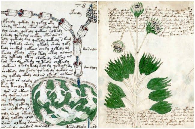 obiecte misterioase, manuscrisul Voynich