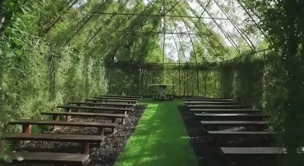 7-this-man-spent-4-years-growing-a-living-church-out-of-trees-in-his-backyard-the-results-will-blow-you-away