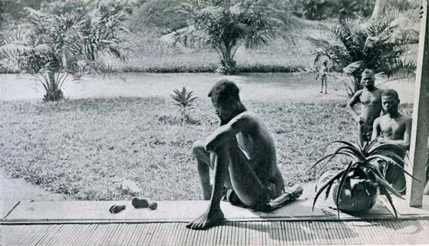 Barbat Congo