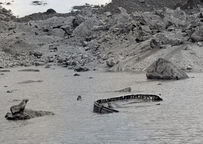Barca Insula Bouvet