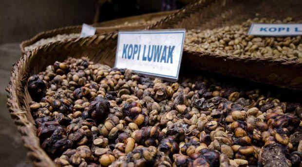 Cafea Kopi Luwak