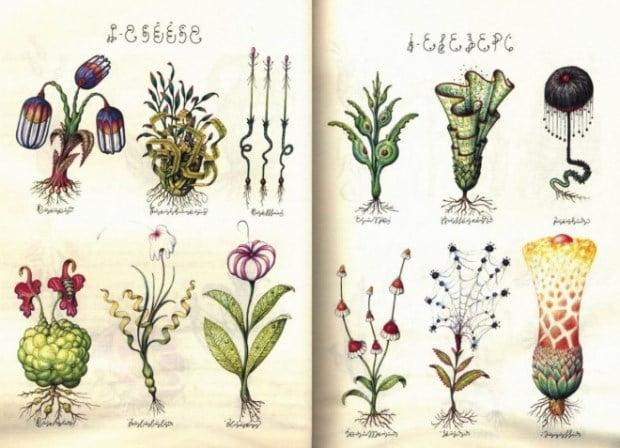 Carti misterioase - Codex Seraphinianus