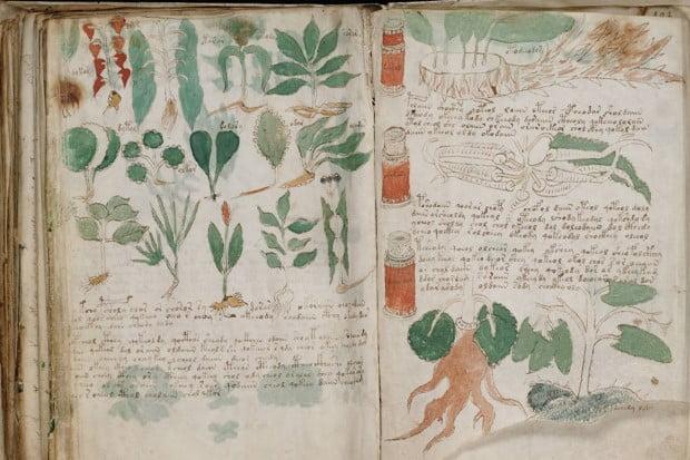 Carti misterioase - Manuscrisul Voynich