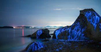 FOTO – Un fenomen ireal transformă această plajă din Japonia într-o mare de lumină
