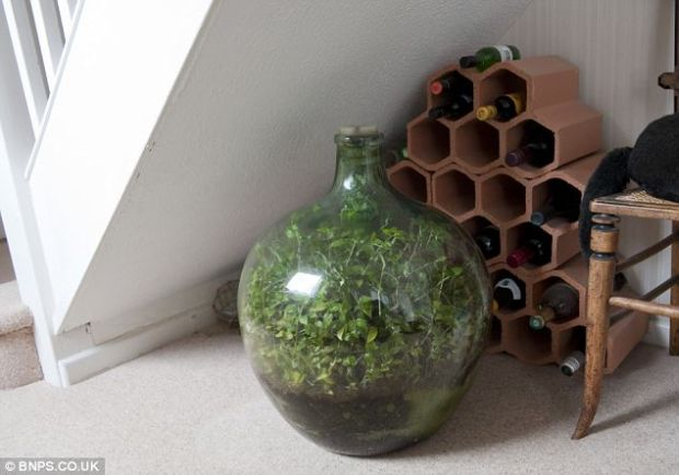 David Latimer - glass under the stairs