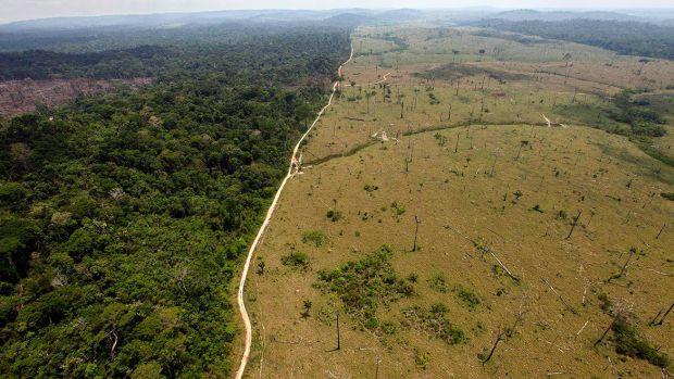 Destinatii turistice - Padurea Amazoniana