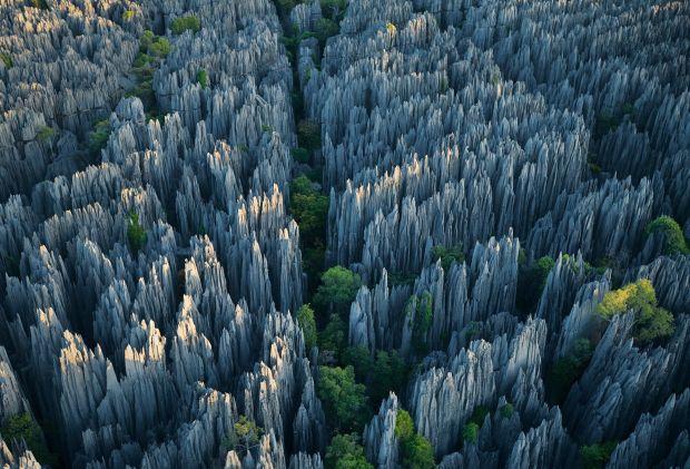 Fenomene stranii - Padurea de piatra