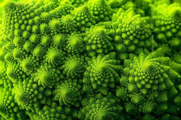 Fractali - Broccoli