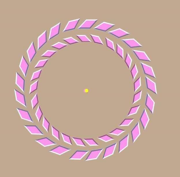 Iluzii optice - Inele roz
