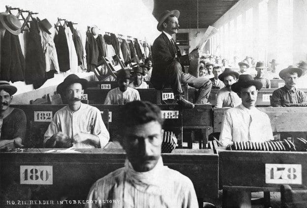 Locuri de munca - Lector