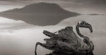 5 cele mai periculoase și sinistre lacuri din lume