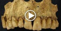video-5-lucruri-fascinante-care-par-minciuni-sfruntate-dar-sunt-100-adevarate-featured