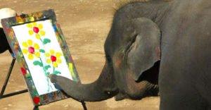 animale inteligente