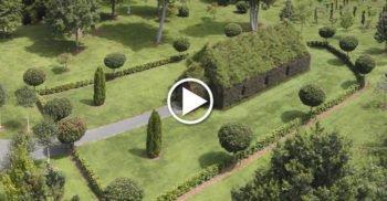 VIDEO – În 4 ani și-a crescut o biserică vie, din arbori, în curtea casei, iar rezultatul te lasă fără cuvinte