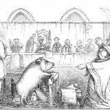 Ce procese bizare aveau loc în Evul Mediu