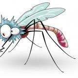 """Care sunt preferințele """"gastronomice"""" ale țânțarilor"""